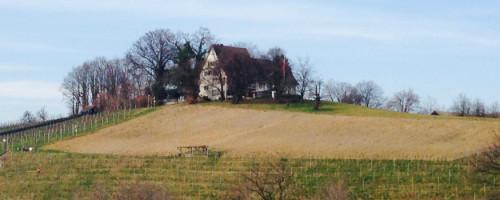 Landgasthof Halbinsel Au